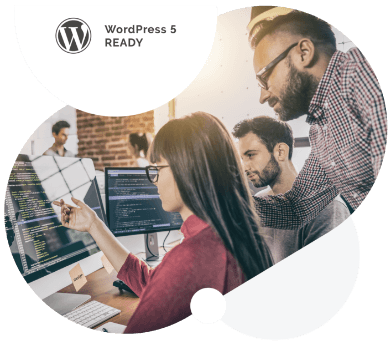 WordPress 5 ready